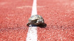 View article Four Reasons To Slow Down
