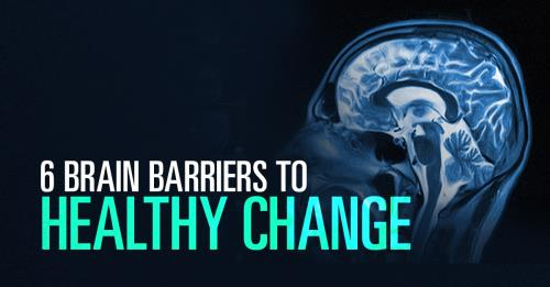 View article 6 Brain Barriers To Healthy Church Change