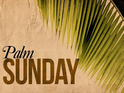 media Palm  Sunday 2