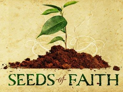 media Seeds Of Faith
