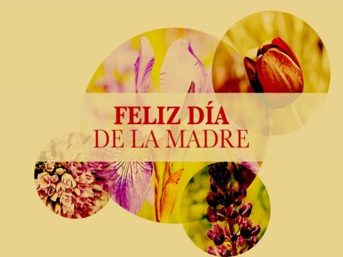 view the PowerPoint Template Feliz Día De La Madre
