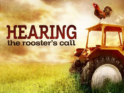 media Hearing The  Rooster  Call